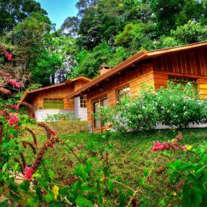 Cabins - Rancho Amalia